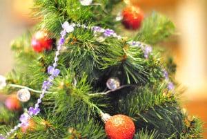 Christmas tree_upclose