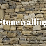 what is stonewalling
